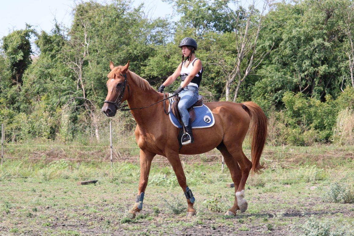 Конна езда сред природата предлага Екопарк Вая